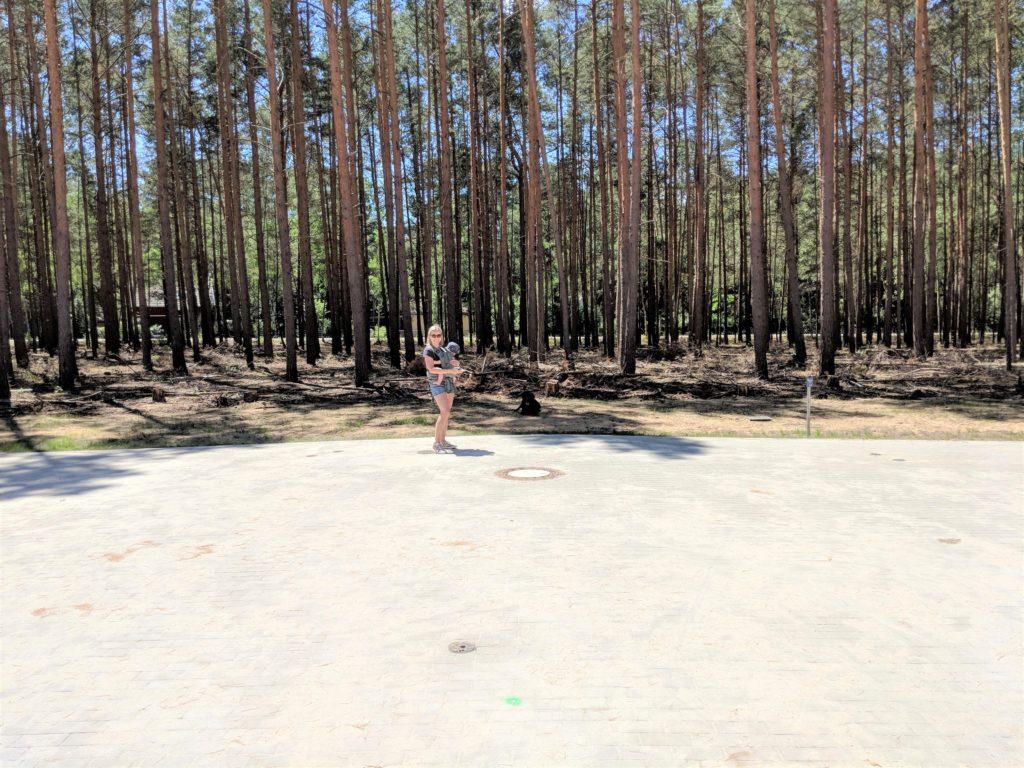 dzialka budowlana w lesie